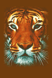 Tiger-be-wild-ii