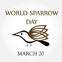 world sparrow day- March 20  by Shawlin Mohd