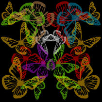 Multiple colorful butterflies by Shawlin Mohd