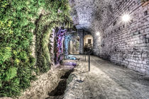 A-garden-in-the-basement-girona-cathedral