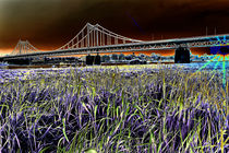 Uerdinger Rheinbrücke von augenblicke