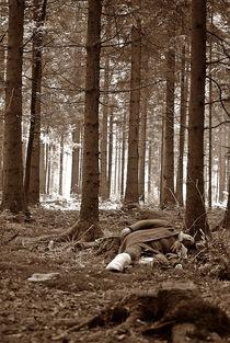lost in the woods... by loewenherz-artwork