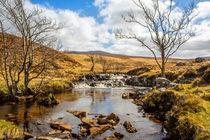 Moorland Falls by David Hare