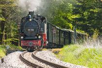 "99788 ""Berta""| Öchsle-Bahn von Thomas Keller"