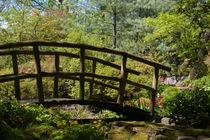.. im botanischen Garten .. von gugigei