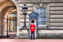 Buckingham Palace Queens Guard by David Pyatt