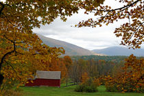 Vermont im Herbst by Borg Enders