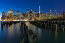 Manhattan Skyline by Borg Enders