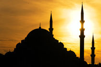 Istanbul Moschee by Borg Enders