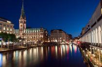 Hamburg Rathaus by Borg Enders
