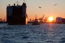 Sonnenuntergang im Hamburger Hafen von Borg Enders