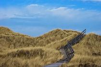 Weg durch die Dünen von AD DESIGN Photo + PhotoArt