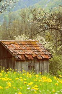 altes Häuschen by gugigei
