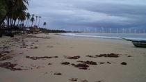 Icaraízinho Beach von Jane Silva