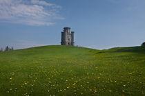 Paxton's Tower View von Leighton Collins
