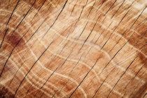 wood texture von oleksandr-malovichko