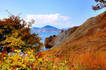 Autumn foliage on the hillside of a Quiet Bay, Crimea by Yuri Hope