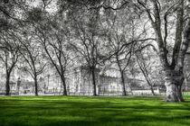 Buckingham Palace von David Pyatt