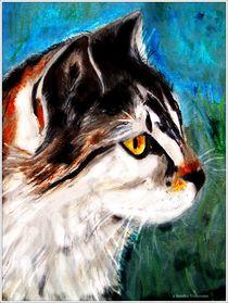 ~ Colorful Cat ~ von Sandra  Vollmann