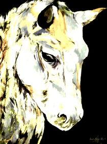 White Horse von Eberhard Schmidt-Dranske