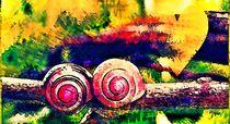 Snails Love von Sandra  Vollmann