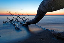 Zingst Weststrand by Borg Enders