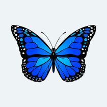 Blue butterfly von Gaspar Avila