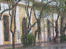 rainy Sevilla von Rudolf Strasser