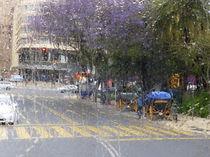 rainy Malaga by Rudolf Strasser