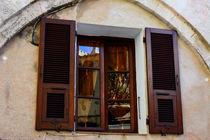 Spiegelfenster von Sonja  Bausr