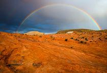 Red Desert Rain by Mike Dawson