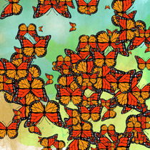 Monarch butterflies by Gaspar Avila