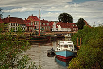 Ribe by Thomas Plag