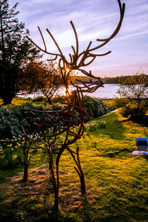 Stag at Shieldaig Lodge Gairloch at Sunset by Les Mitchell