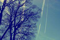 Sky stripes by leddermann