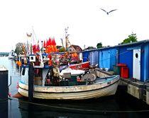 Fischerei - ganz bunt von Martina Lender-Frase