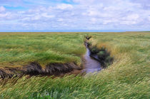 Landschaftsimpression Westerhever by AD DESIGN Photo + PhotoArt