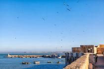 Die alte portugiesische Festungsstadt El Jadida in Marokko  von Gina Koch