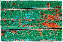 Exfoliated Color Green von Sandra  Vollmann