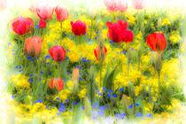 Summer Flowers Art von David Pyatt