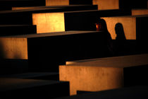 Schatten die uns folgen  von Bastian  Kienitz