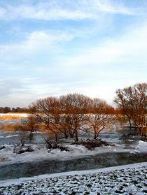 A winter fairy tale... von voelzis-augenblicke