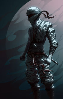 Ninja von viscilo
