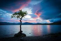 Evening on Loch Lomond  by David Hannah