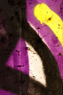 Ausschnitt-aus-einem-graffiti-6138