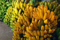Bananas at night von Gaspar Avila