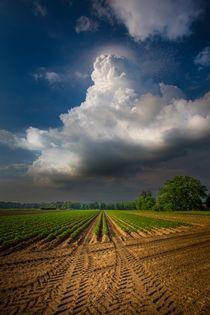 ... schoene wolke :-) von Manfred Hartmann