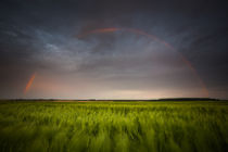 Rainbow by your-pictures