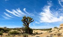 Clouds in the desert von Bettina Breuer