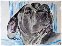 Charming Boy Dog von Sandra  Vollmann